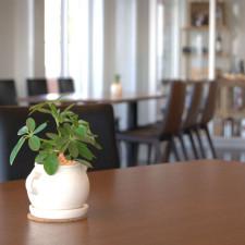 イタリアン&カフェ スカルペッタの店内風景 その3